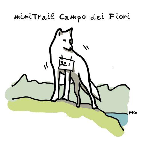 Logo Mini Trail